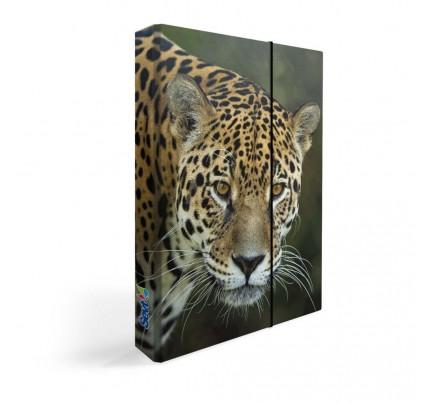 "Dosky s boxom ""zviera – jaguár"", 2020, A5, lamino"
